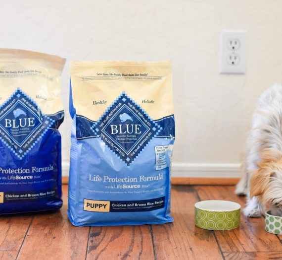 Take Pride In What You Feed Your FurBaby; Dogs Need Good Food Too! Introducing: Blue Buffalo®